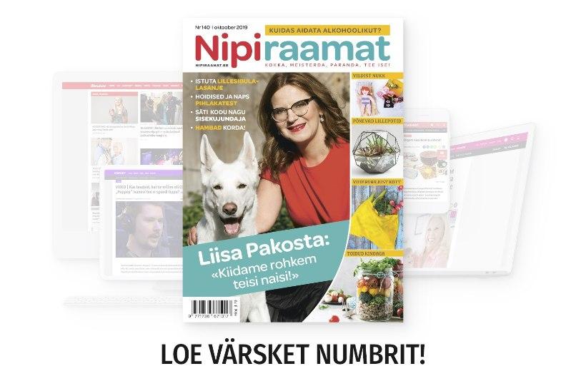 OKTOOBRIKUU NIPIRAAMAT: loe nüüd ajakirja ka veebis!