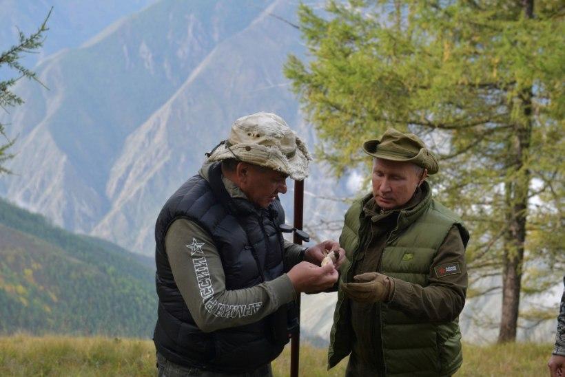FOTOUUDIS | Putin sõitis sünnipäeva puhul seenele