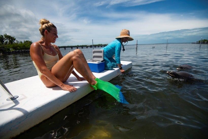 Vägev! Eestlanna ujus esimese inimesena merineitsisabaga 10 kilomeetrit: teadsin ette, et see ei saa lihtne olema