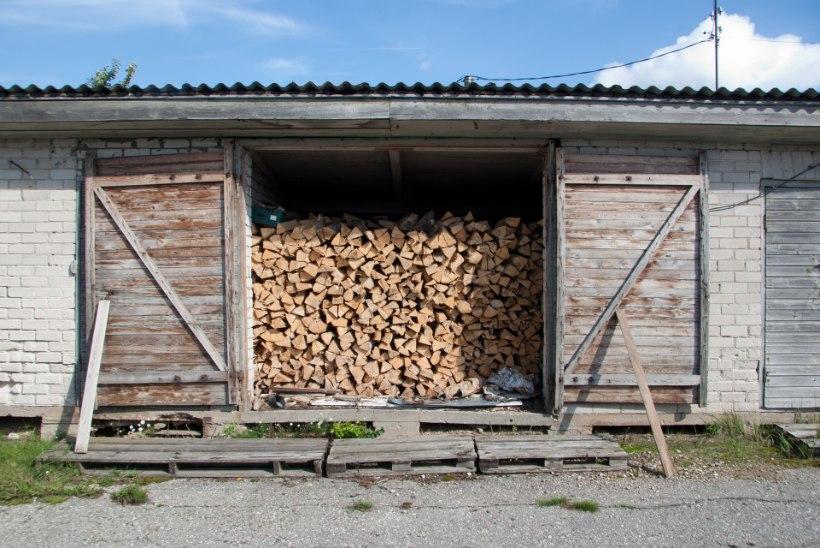 """Küttepuude müüja: """"Kevadel võiks oodata hindade langust."""""""