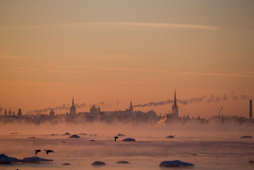 Tallinn on kultuurseim linn Põhja-Euroopas