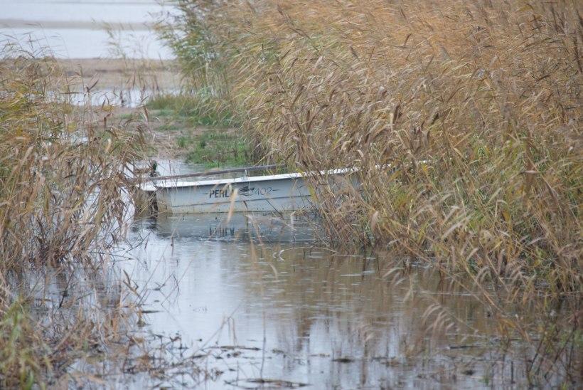 Peipsi veetase on madal, kalapaadid pääsevad järvele raskustega