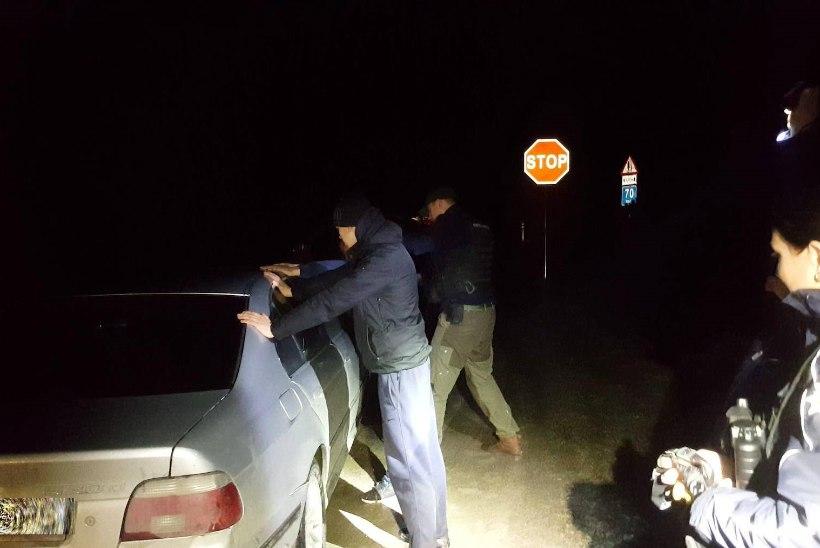 ÖINE VARITSUS: tublid noorkotkad peletasid röövpüüdjad