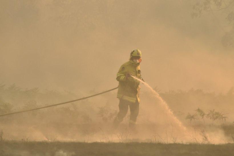 KARM! Austraalia metsapõlengu tõttu anti äsja MM-tiitli võitnud Hyundai tiimile evakuatsioonihoiatus