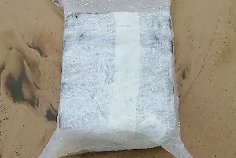 ERAKORDNE! Prantsusmaal on lained uhtunud Atlandi rannikule ligi tonni kokaiini