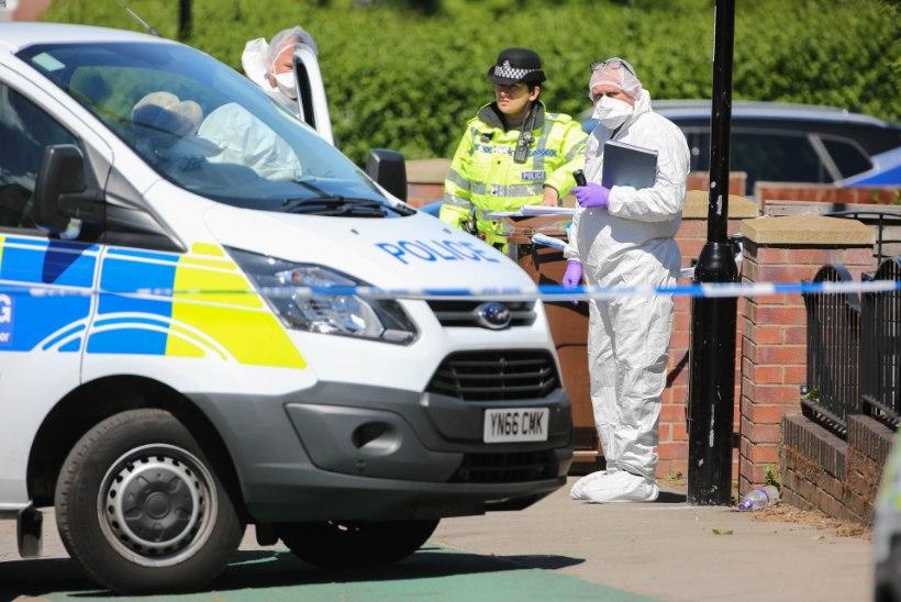 ŠOKK: Inglismaal kuuest lapsest kaks tapnud vanemad osutusid õeks ja vennaks