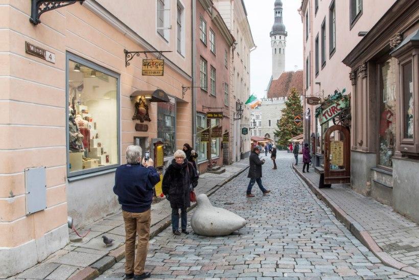 Tõnis Erilaiu lehesaba | Kuidas Tallinna majad said numbrid