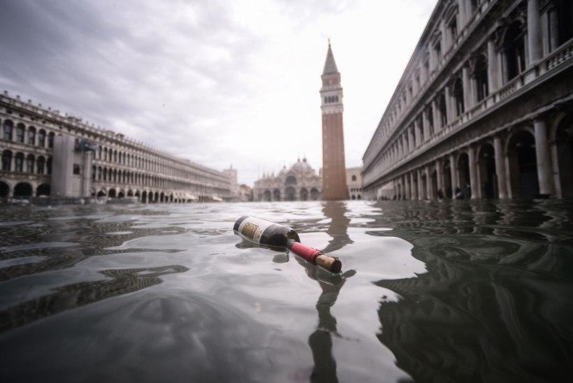 VESI TÕUSEB JÄLLE: Veneetsia kuulus Püha Markuse väljak on üleni vee all