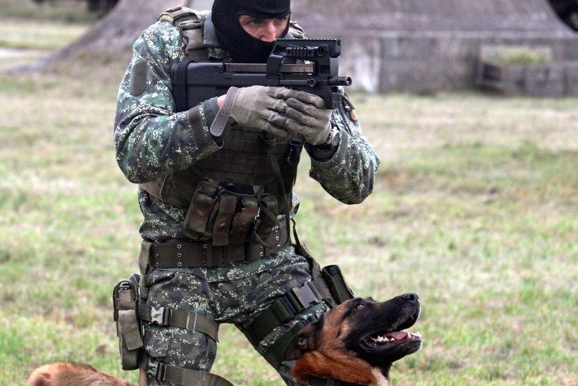 Koerajuhi tapnud sõjaväekoerad ootavad oma saatust karantiinis