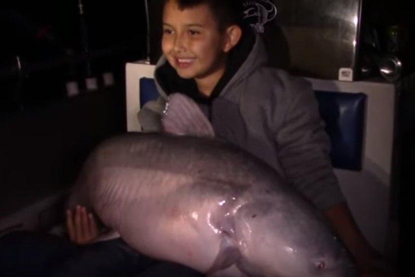 VIDEO | POLE PAHA: üheksa-aastane poiss tabas 19kilose säga