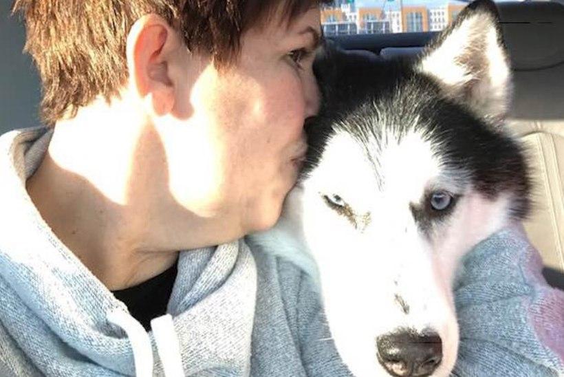 IMELINE LUGU: koer diagnoosis oma perenaisel korduvalt vähi!