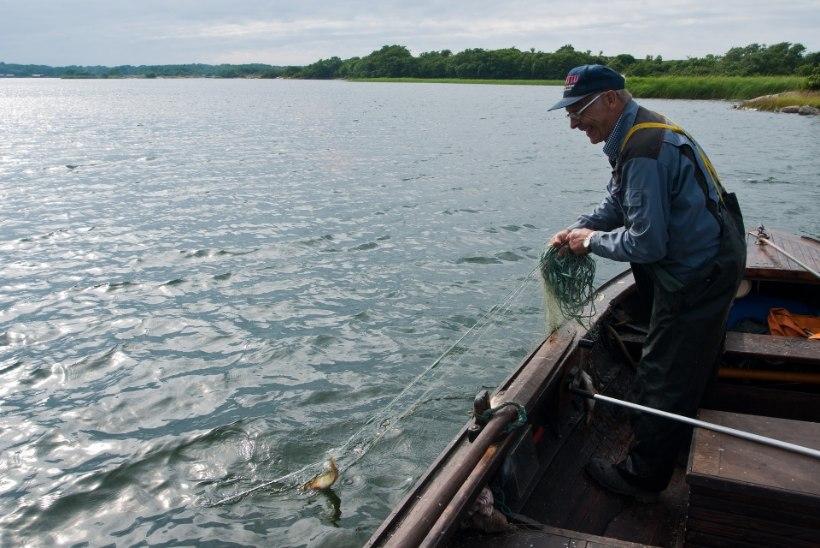 Ministeerium kalurite olulise verstaposti eel: nädalane kalastuskaart vähendab defitsiiti