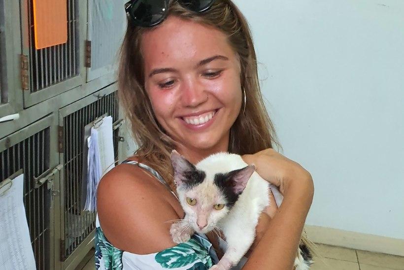 FOTOD | Helen Adamson päästis Balil hulkuva kassi: ta oli nii halvas seisus, et nutsin lohutamatult, kui ta leidsin