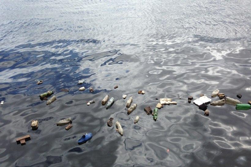 VAENE REOSTATUD MERI: Indoneesia kalad söövad kuni 63 tükki plasti tunnis