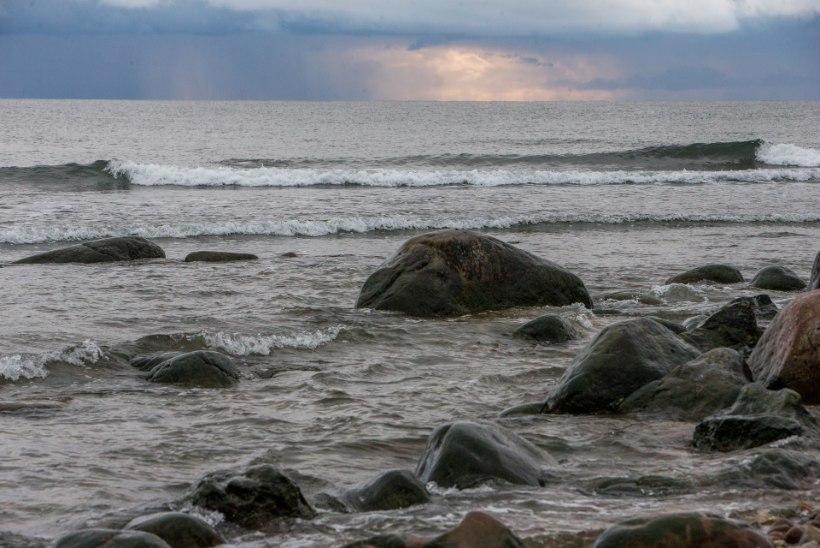 OLUKORD LÄÄNEMERE KALLASTEL: kliimamuutuste üleelamiseks on Eesti lähitulevikus väga hea koht