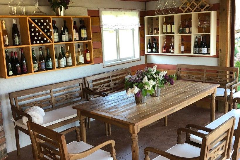 Veinireisile Eestisse? Aga miks mitte?