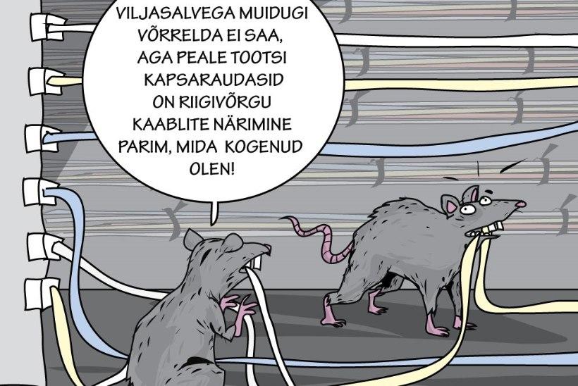 Juhtkiri | E-riigi plaan B rottide vastu
