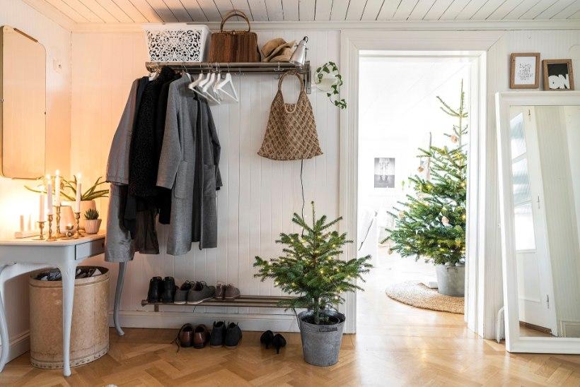 FOTOLUGU | Mõnus jõulumeeleolu rootsipunases suguvõsamajas