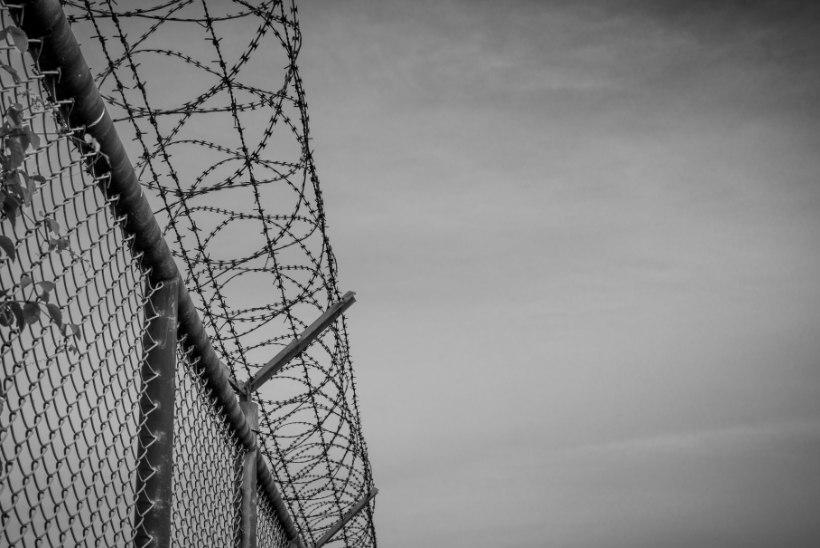Praktik: vangla saab vägivallatseja harva terveks teha