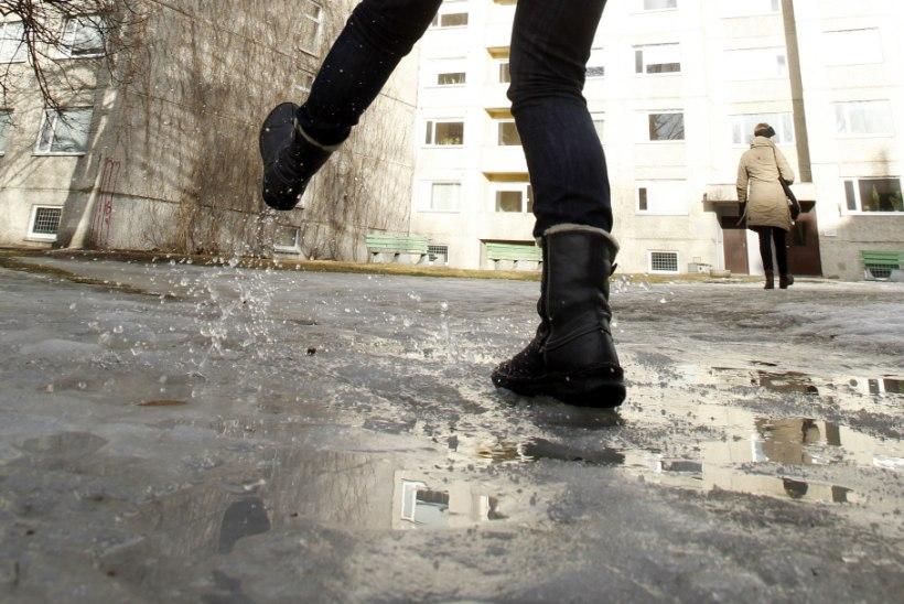 PISARAD JA KARJED: jääga kaetud Tallinna tänavail langes inimesi loogu
