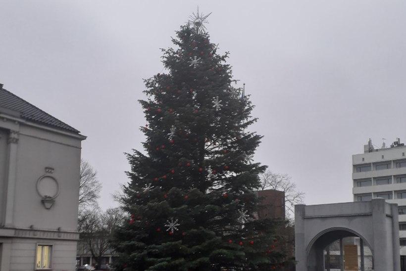 Jõuluvanad marsivad Pärnus Iseseisvuse väljakule