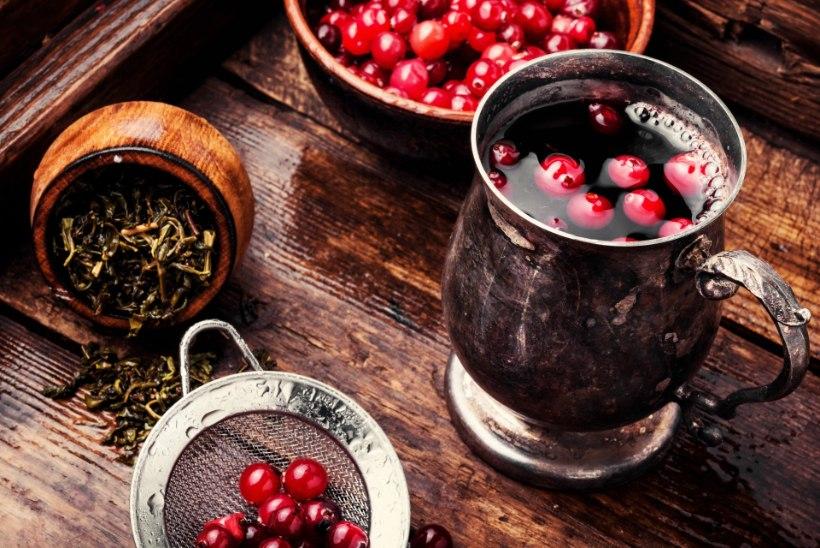 10 KODUST GLÖGI JA HÕÕGVEINI: valmista ise kuum ja kosutav talvine jook, just nii magus nagu ise tahad