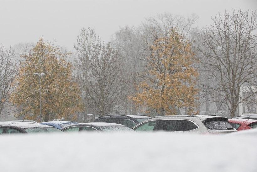 November ehk hingekuu toob endaga kaasa lund ja öökülma