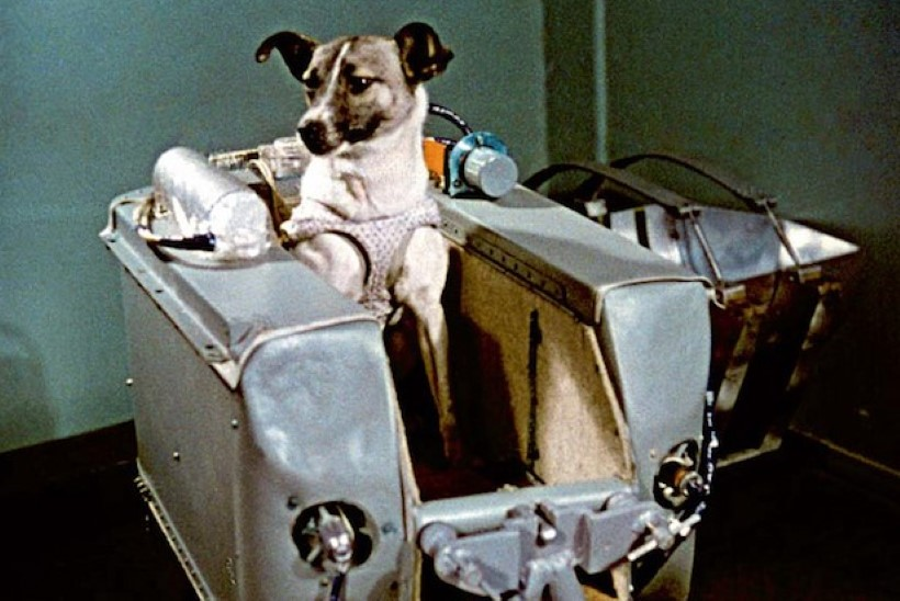 MINEVIKUHETK   3. november: Nõukogude Liit saatis hulkurkoer Laika kosmosesse