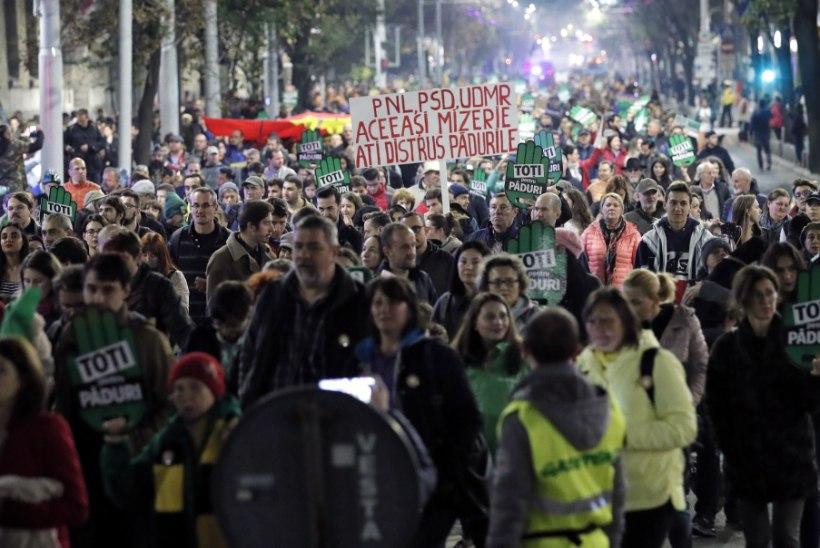 """""""Meie mets pole teie vara!"""" Tuhanded rumeenlased protestisid metsamaffia vastu"""
