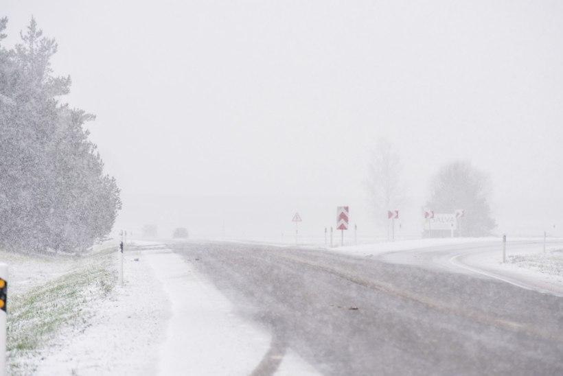 GALERII | TALI TULEB: Viljandis on paks lumesadu!