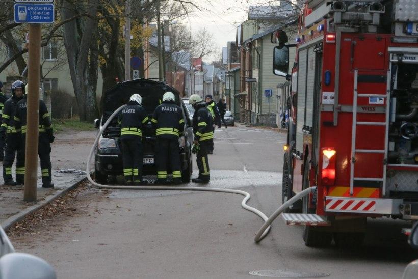 FOTOD   Tallinnas süttis Wismari haigla läheduses auto