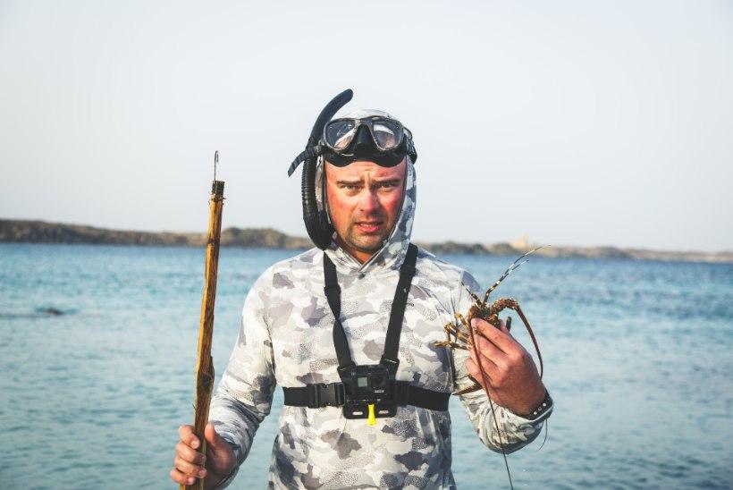 LENDÕNGEGA SINIVETEL: tagasi Lõuna-Omaani randadel