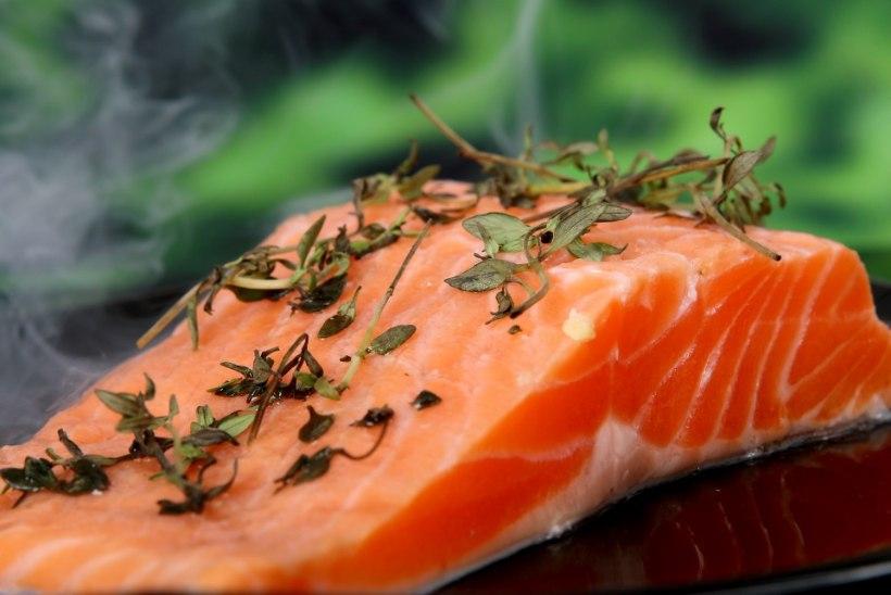 Millistes Eesti kalades leidub kõige vähem elavhõbedat?