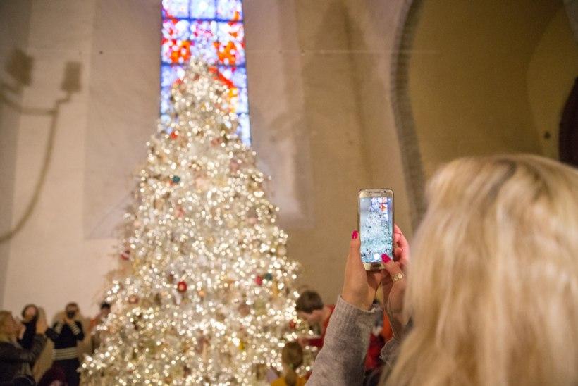 Seisukoht | Jõuluvingatsid pagegu pühakotta
