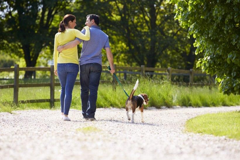 Lugejakiri: jalutuskäik olematu koeraga