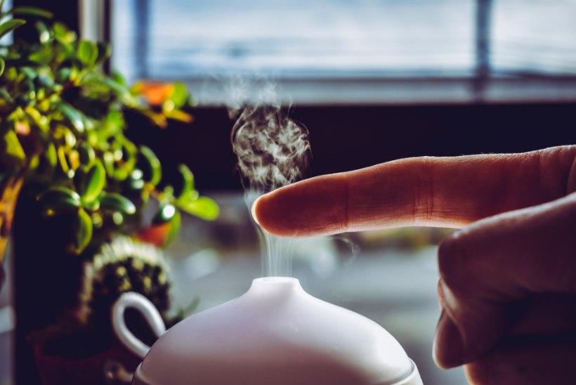 KODUNE AROOMTERAAPIA | Difuuser leevendab nii tervisehädasid kui loob hea meeleolu