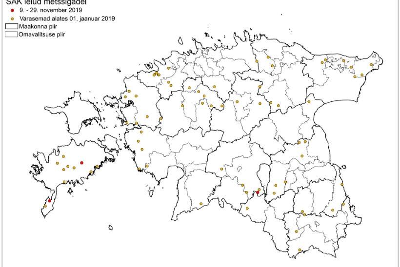 KAART | Vaata, kust on leitud seakatkuga nakatunud metssigu