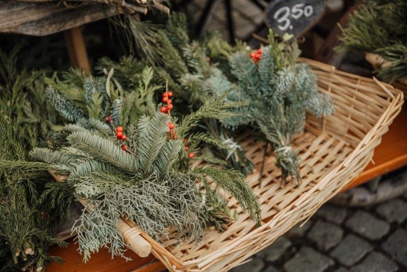 Kas lähed ka täna jõuluturule? 7 tähelepanekut, mida oste tehes teadma peaksid