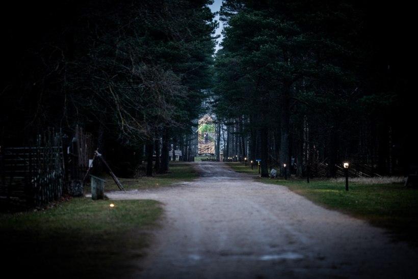 VIDEO   Vaata, milline näeb välja Eesti Vabaõhumuuseumi esimene video- ja valgusetendus
