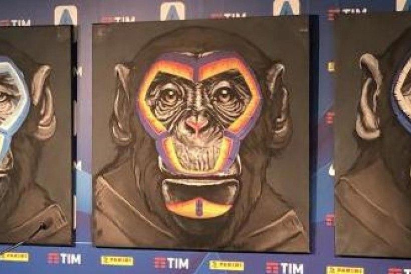 """Kuidas võidelda rassistidega? Kriitikatule alla sattunud kunstnik: """"Me kõik oleme ju ahvid."""""""