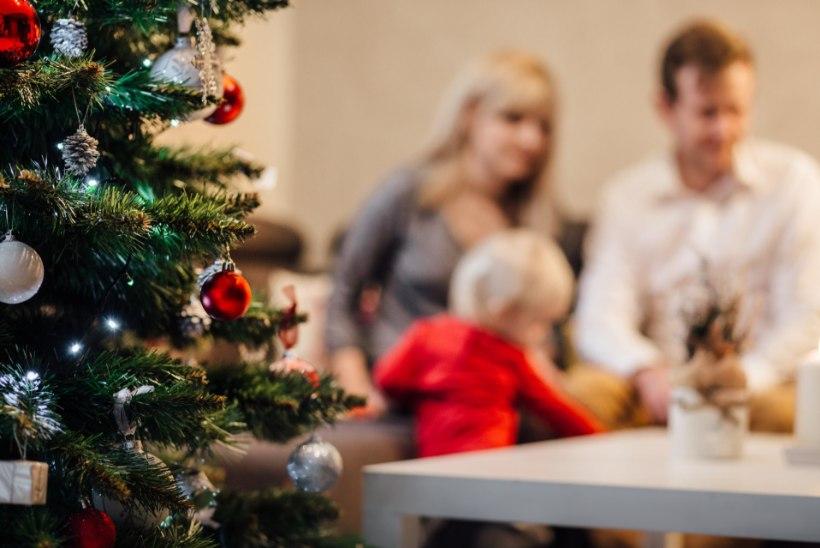 Eesti inimesed arutlevad: milline puu jõuluks tuppa tuuakse?