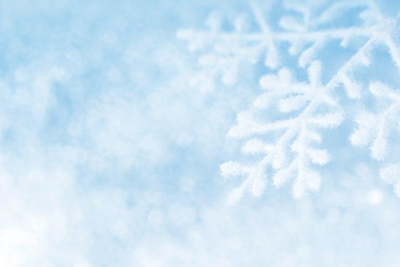 Jõulumaad on avatud ja ootavad peresid külla. Vaata, kuhu soovitab minna Naisteleht