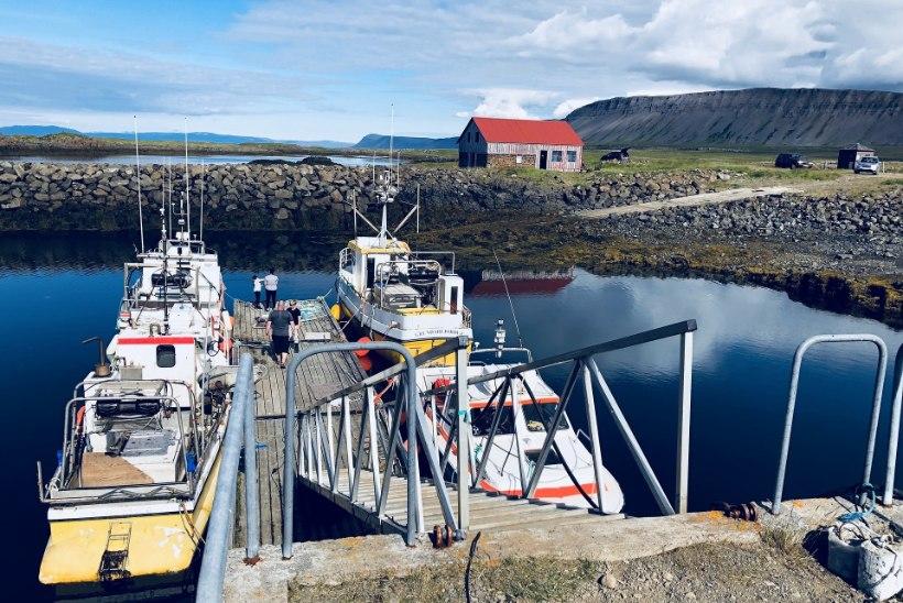 Meri soojeneb, kala kolib: kliimamuutused kujundavat Islandit ümber