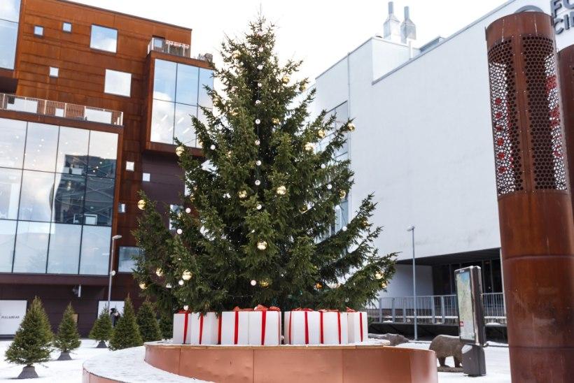 ÕL VIDEO | Vaata ja imetle: just need on Tallinna ja Viimsi uhkeimad jõulupuud!