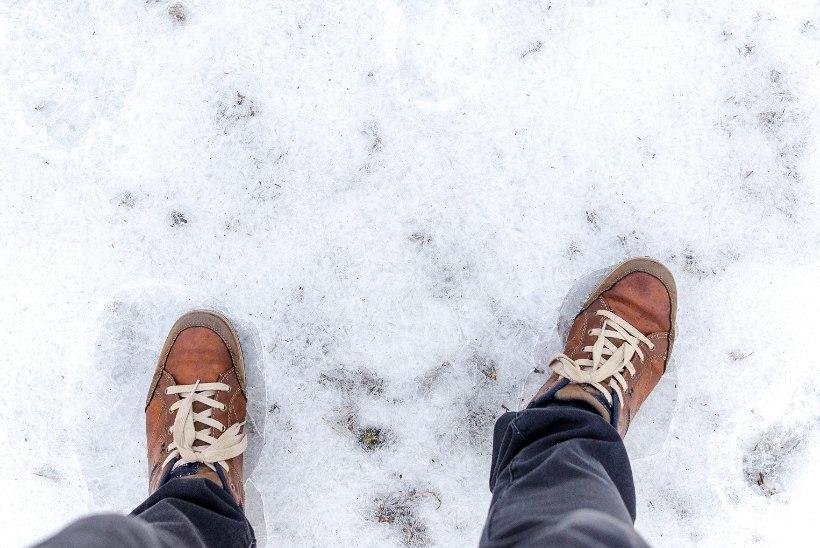 Võitluslibeda ja lumega: müüdid ja tegelikkus