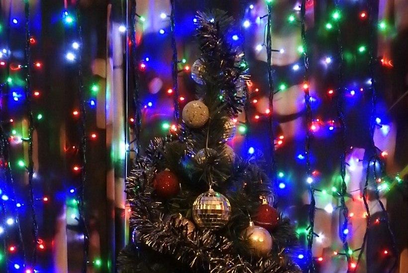GALERII | Vaata, millised jõulupuud ilustavad eestlaste kodusid