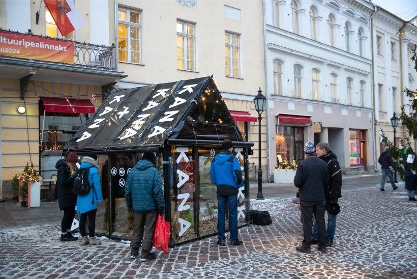 Elukoht Raeplatsil: linnuperest said Tartu jõululinna alalised elanikud