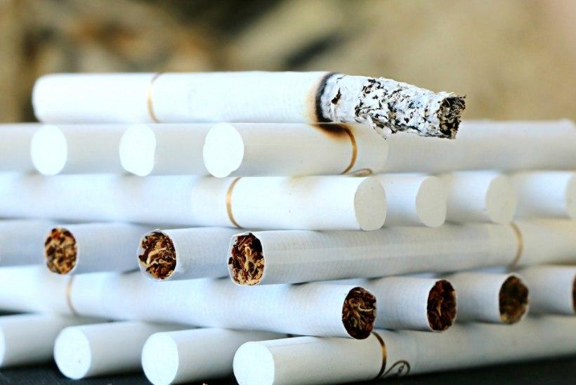 Robert Rool kutsub üles tubakast loobuma: tee uuel aastal Sigarexit!