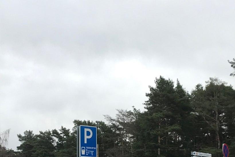 FOTO   Joobes juht sõitis vastu tänavavalgustusposti