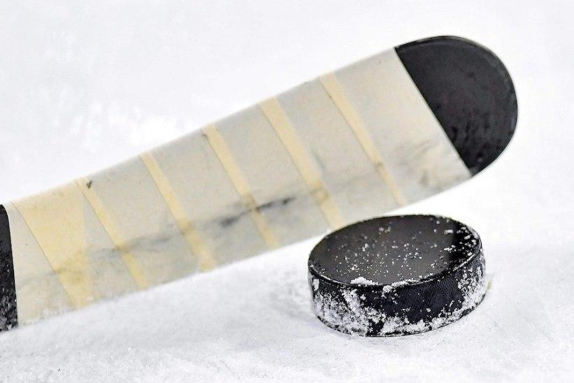 Eesti jäähokiklubi eemaldati Soome meistrivõistlustelt lapsevanemate ja meeskonna juhtide käitumise tõttu
